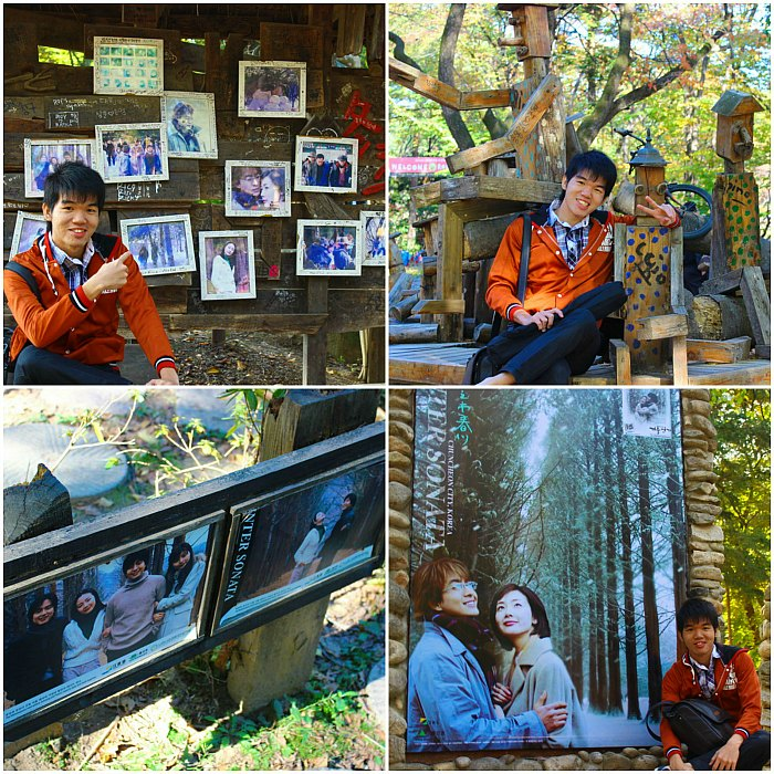 Nami Island - Winter Sonata
