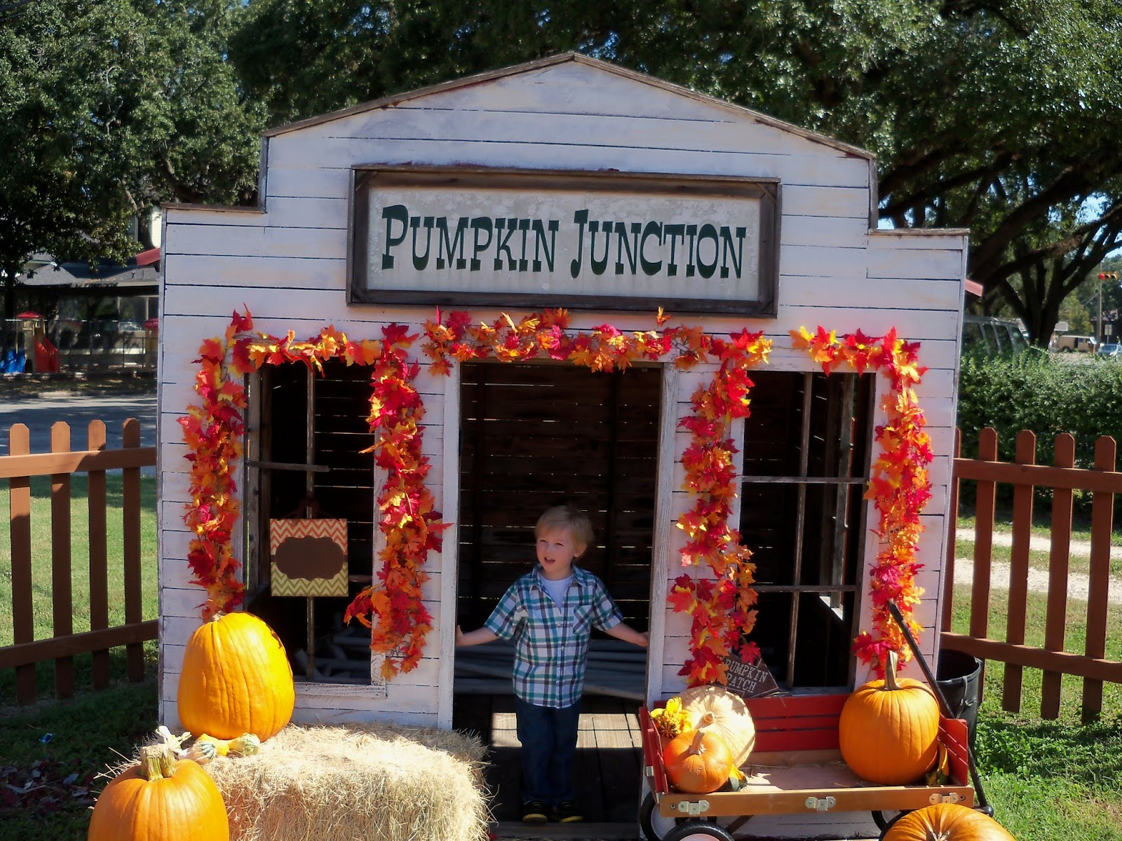 Pumpkin Patch 2015 - 100_0420.JPG