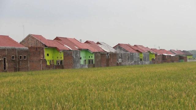Lahan Pertanian di Jombang Susut Ribuan Hektar