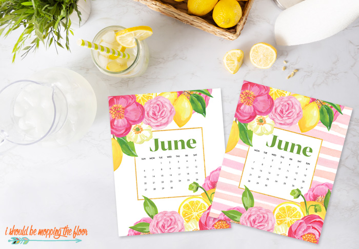 Printable June Calendars