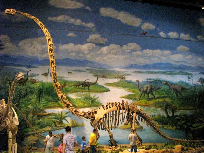 Sauropoda dinosaur bones at the Zigong Dinosaur Museum
