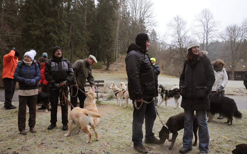 20140101 Neujahrsspaziergang im Waldnaabtal - DSC_9885.JPG