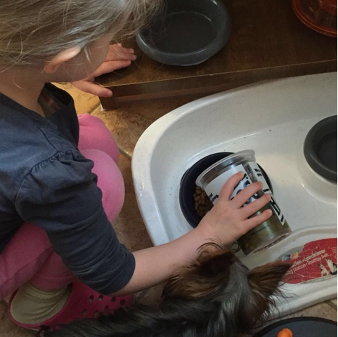 Kind füttert den Hund