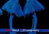 Han Balk Introdans SAPPERDEFLAP-5137.jpg