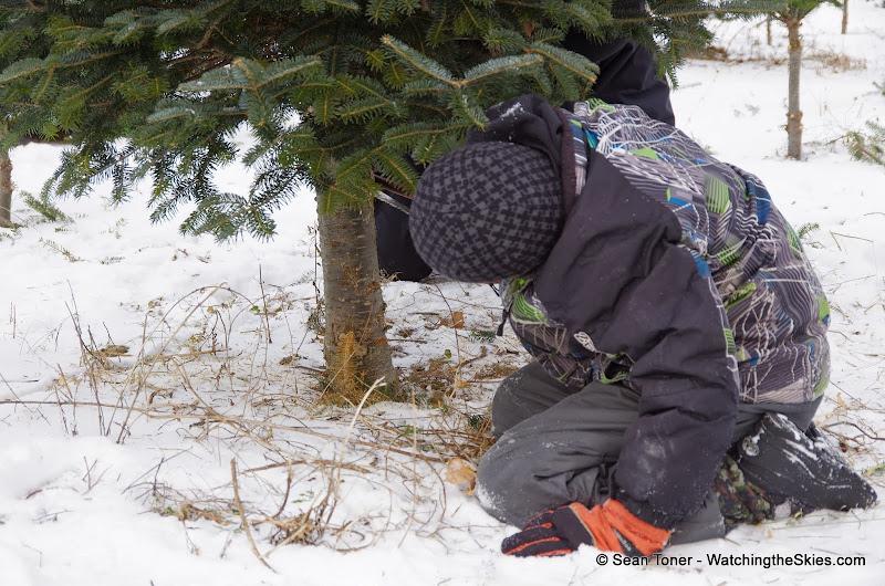 Vermont - Winter 2013 - IMGP0522.JPG