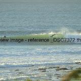 _DSC7372.thumb.jpg