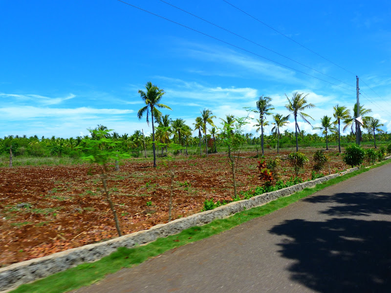 Camotes et Poron island - philippines1%2B880.JPG