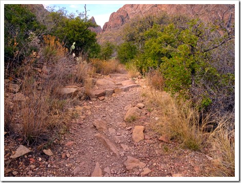 Window Trail...Big Bend