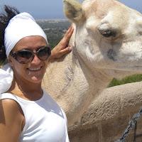 Foto del profilo di Asterina