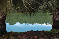 Instituto de Arte Contemporânea em Inhotim - Brumadinho, Minas Gerais. Fotos do evento Inhotim. Foto numero 4.