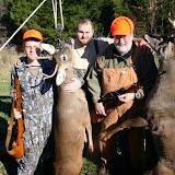 Deer Hunt 2013