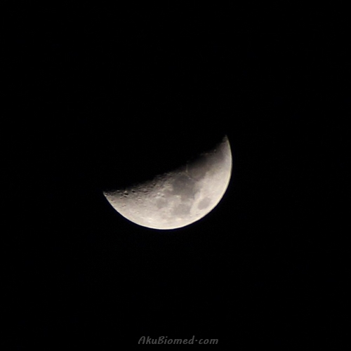 anak bulan