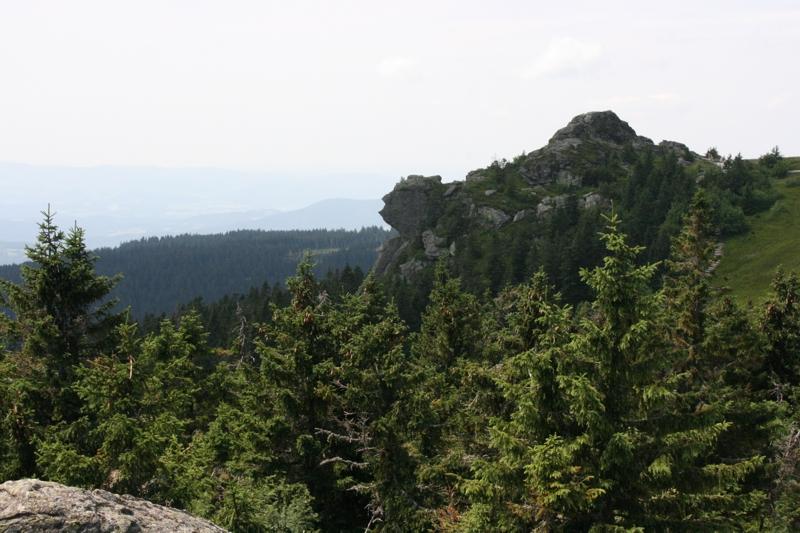 Ausflugsfahrt in den Bayerischen Wald: 19. Juli 2015 - IMG_1818.JPG