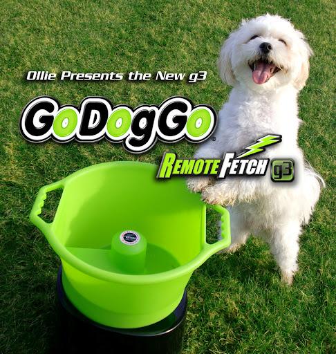godoggo fetch machine i automatic ball launcher for dogs google