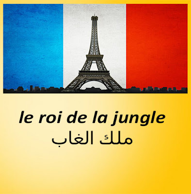 le roi de la jungle ملك الغاب