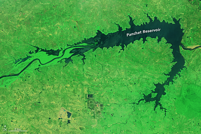 The Operational Land Imager (OLI) on the Landsat 8 satellite captured this image of India's Panchet reservoir on 10 June 2015. Photo: Joshua Stevens / NASA Earth Observatory