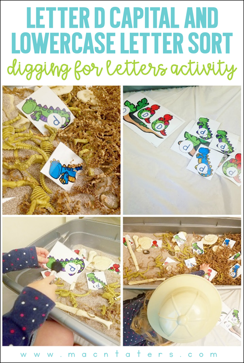 Letter D Capital and Lowercase Letter Sort