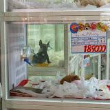 2014 Japan - Dag 3 - mike-P1050560-0096.JPG
