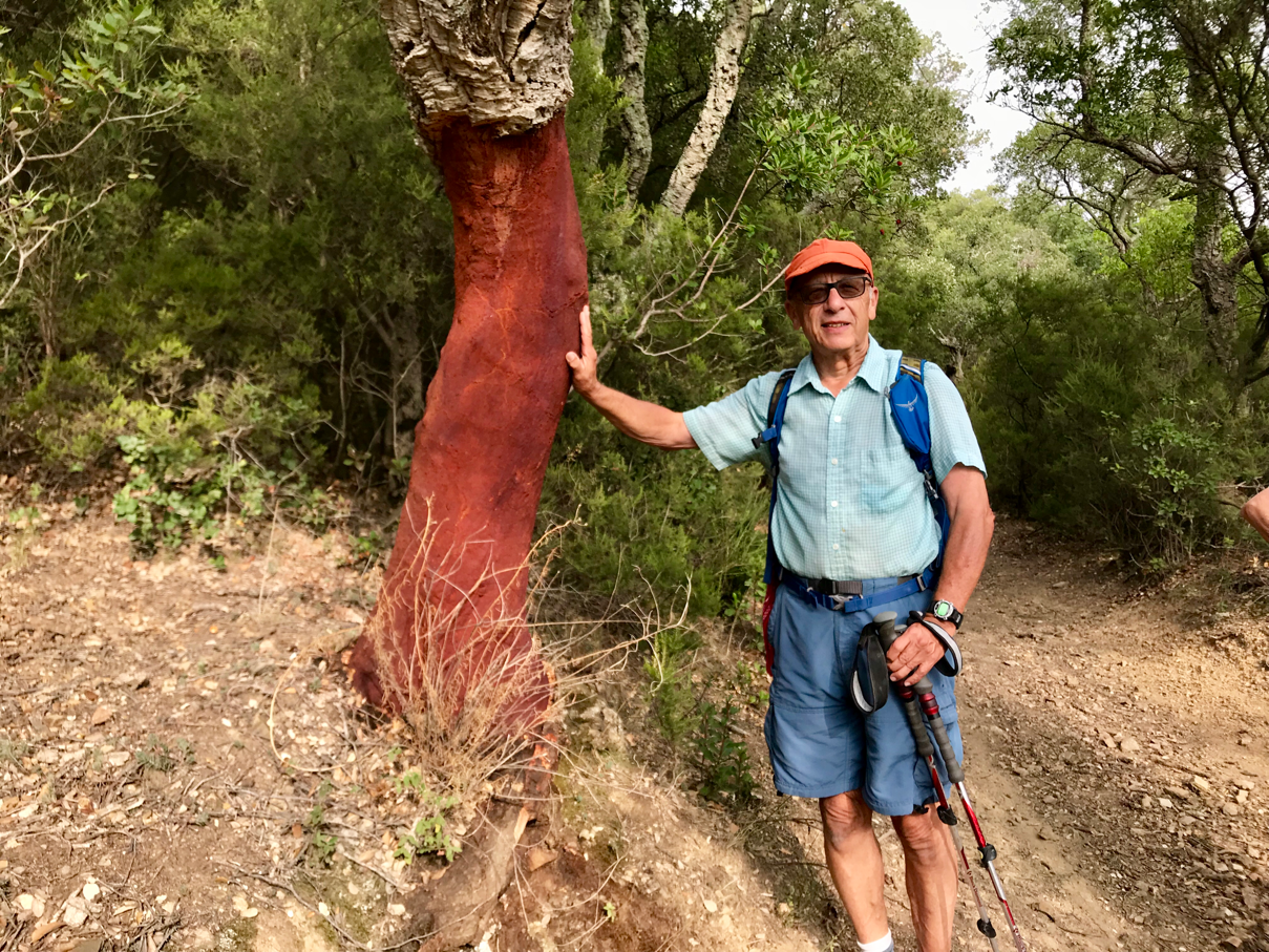 Dad and a cork tree