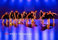 Han Balk Voorster Dansdag 2016-4085-2.jpg