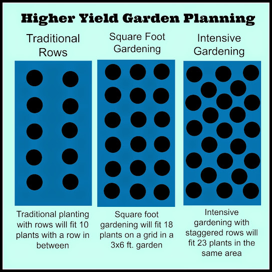 Greneaux gardens small space vegetable garden techniques intensive gardening - Spacing planting vegetables guide ...