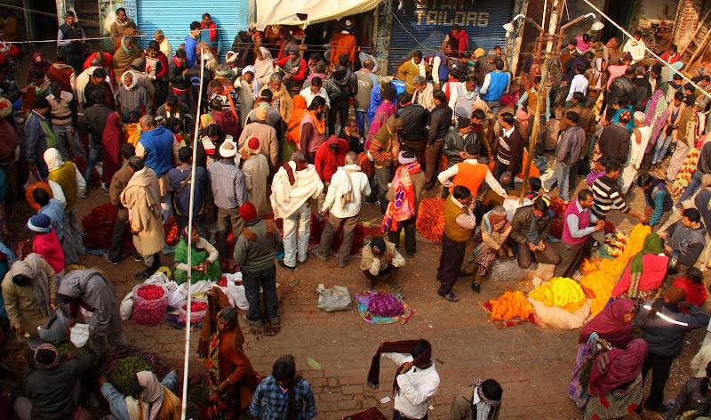 #Varanasibansphatakflowermarket #varanasiflowermarket #travelbloggerindia