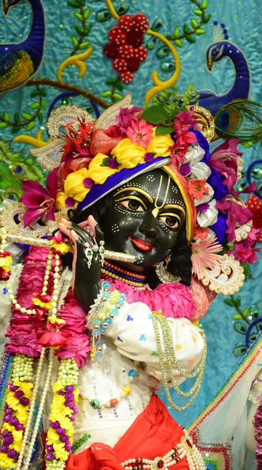 ISKCON GEV Deity Darshan 03 jan 2017 (12)