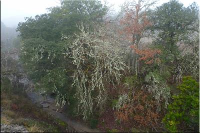 Cauce seco del río De Goro