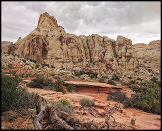 Loved the Layered Sandstone here with the gorgeous rock behind on the Rim Overlook Trail.