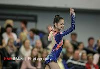 Han Balk Fantastic Gymnastics 2015-2379.jpg