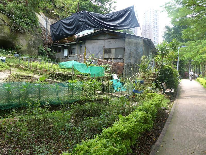 Quelques maisonettes au long du parc.
