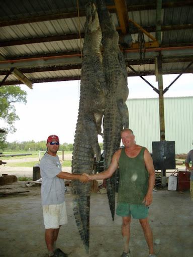 Questões e Fatos sobre Crocodilianos gigantes: Transferência de debate da comunidade Conflitos Selvagens.  - Página 3 GlennCapdepon12-6retrapWEB