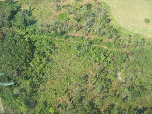 Aerial Shots Of Anderson Creek Hunting Preserve - tnIMG_0378.jpg