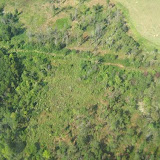 Aerial Shots Of Anderson Creek Hunting Preserve - tnIMG_0378.jpg