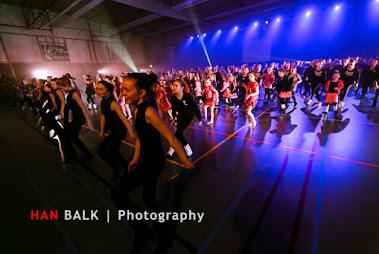 Han Balk Voorster Dansdag 2016-4821.jpg