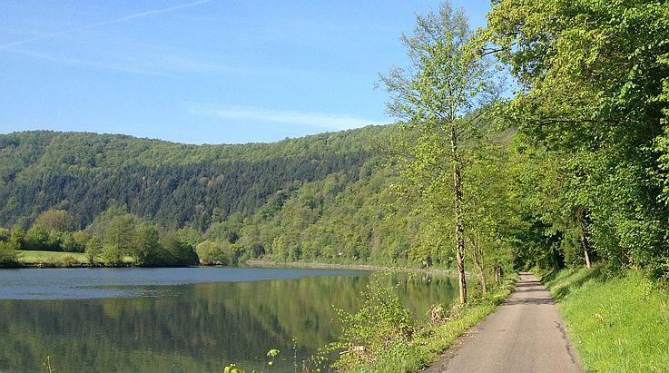 Neckarradweg zwischen Eberbach und Bad Friedrichshall