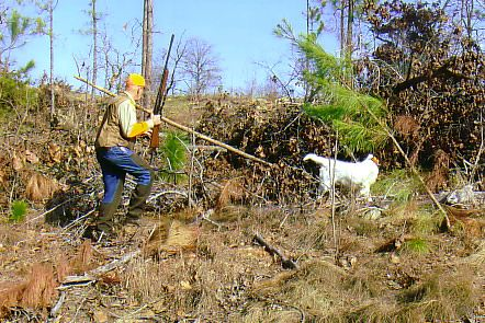 Feb 2008 - Hunting with dog @ Anderson Creek Hunting Preserve