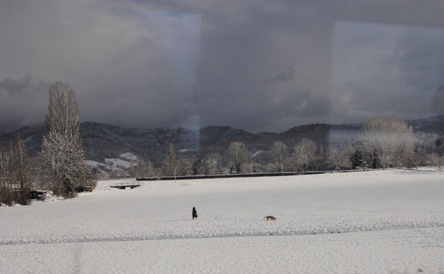 On the way to Basel; Fraulein and Fido, in the snow!