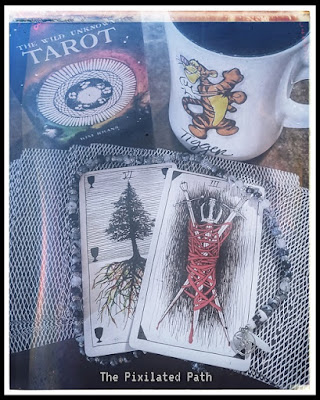 Three of Swords & Six of Cups from The Wild Unknown Tarot