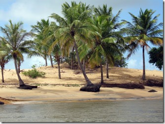 foz-do-sao-francisco-maceio-2