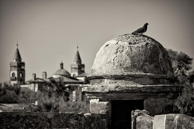 cemetery_pinhole