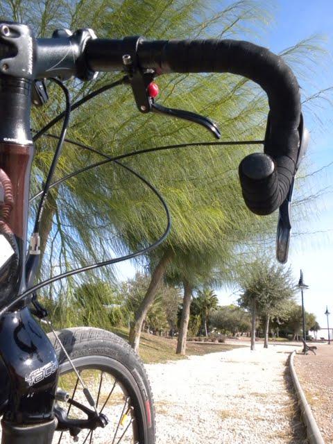 La historia de una bicicleta DSCN8780
