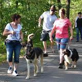 On Tour am Obersee bei Eschenbach: 21. Juli 2015 - DSC_0142.JPG