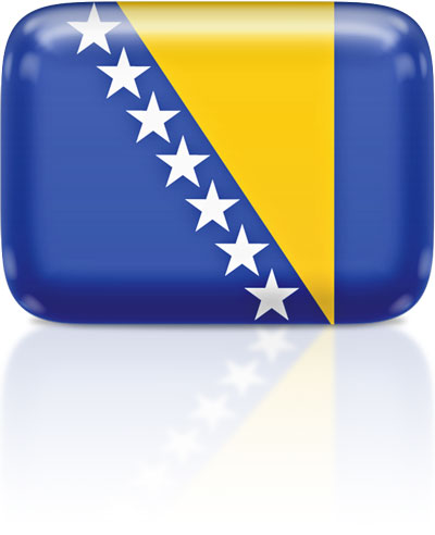 Bosnian  flag clipart rectangular