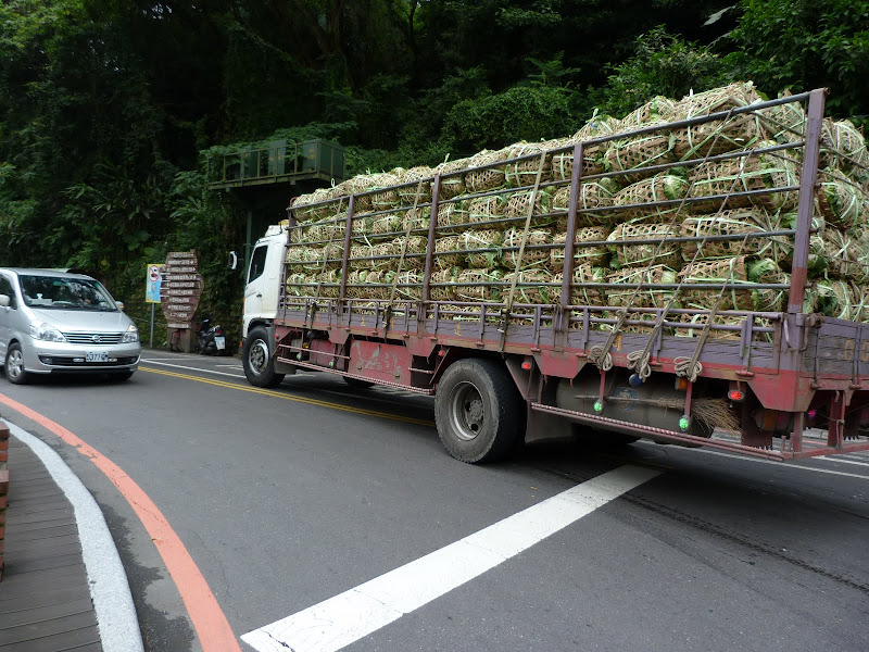 TAIWAN Shiding - P1140255.JPG