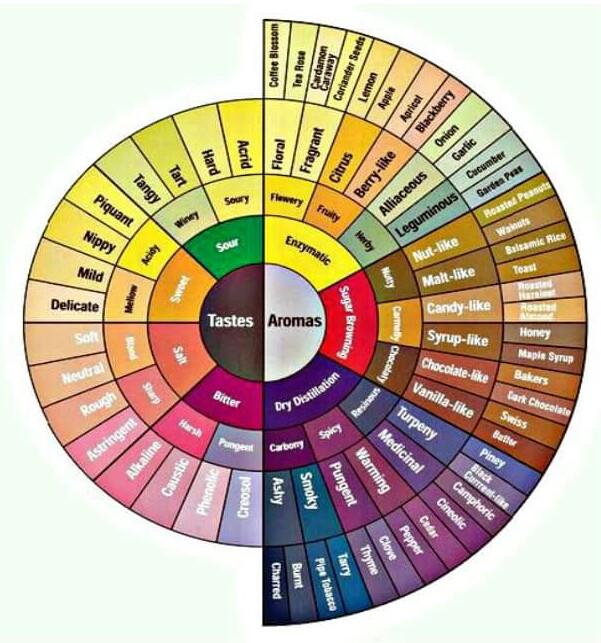 Rasa dan aroma ii kopi nusantara selain digunakan untuk analisa rasa dan aroma kopi atau cupping aroma dan rasa dari kategori kategori diatas juga digunakan untuk belajar mengenal rasa dan ccuart Gallery