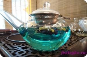тайский синий чай противопоказания