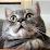 Iuri Malorgio's profile photo
