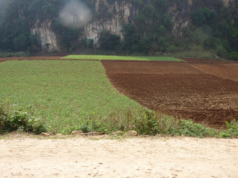 Chine . Yunnan..Galamba, Menglian Album A - Picture%2B460.jpg
