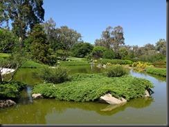 171109 059 Cowra Japanese Gardens